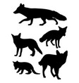 fox mammal animal silhouette vector image vector image