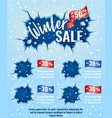 winter sale template design for email marketing vector image