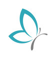 teal butterfly logo template vector image