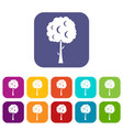 tree with spherical crown icons set vector image vector image