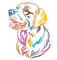 colorful decorative portrait of dog golden vector image