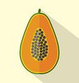 Flat Design Papaya Icon vector image vector image