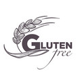 gluten free products poster with wheat vector image