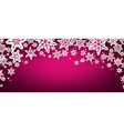 Pink winter banner with snowflakes vector image vector image