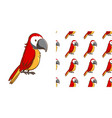 seamless background design with red macaw vector image