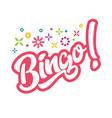 bingo game vector image vector image