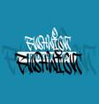 bushwick brooklyn nyc usa hand lettering graffiti vector image