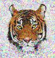 Multicolor tiger head design vector image vector image