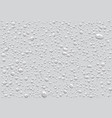seamless pattern of water drops on a white back vector image