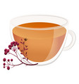 tea from natural fruits berry tea in a cute vector image