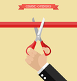 Grand opening poster in flat style vector image