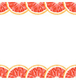 seamless decorative border of grapefruit slices vector image vector image