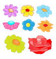 flowers theme collection vector image vector image