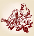 lovers birds sitting on a branch hand drawn vector image vector image