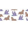 Seamless pattern with walruses