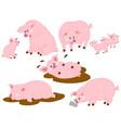 set cute cartoon pigs vector image vector image