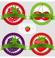 berry labels vector image vector image