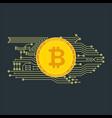 bitcon poster gold vector image