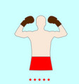 boxer set it is color icon vector image