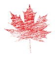 Grunge Maple Leaf vector image vector image