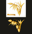 oat 3d realistic icon vector image vector image