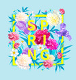 spring collections background vector image vector image
