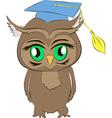 academic owl cartoon vector image