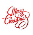 christmas card with text merry christmas vector image