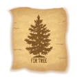 Christmas Fir Tree on Old Paper vector image vector image