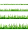 Grass seamless field pattern isolated on white vector image vector image