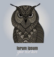 Zentangle owl blue background vector image