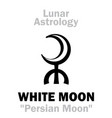 astrology white moon vector image vector image