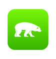 bear icon digital green vector image