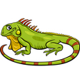 iguana animal cartoon vector image