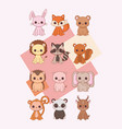 kawaii animals design vector image vector image