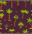 palma palmaceous tropical tree with coconut vector image vector image