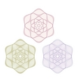 set of vector guilloche rosettes vector image vector image