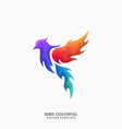 bird colorful concept template vector image
