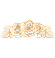 decorative element with outline roses beautiful vector image vector image
