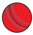 isolated cricket ball vector image vector image