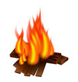picnic fire icon realistic style vector image vector image