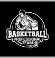 professional team basketball modern logo badge vector image vector image