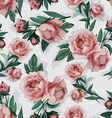 seamless floral pattern with pink peony vector image vector image
