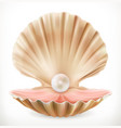 shell with pearl clam oyster 3d icon vector image vector image