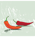 card with peppers vector image vector image