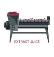 extract juice grapes squeezing winemaking industry vector image vector image