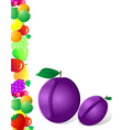 plum and fruit vector image