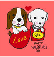 puppy poodle and beagle couple happy valentines vector image