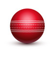red cricket ball with leather string vector image