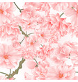 seamless texture twig tree sakura blossoms vector image